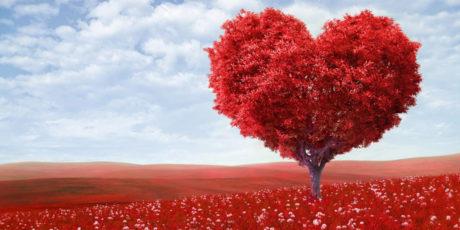 Топ-10 лучших любовных романов