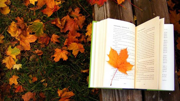 Книга, осень