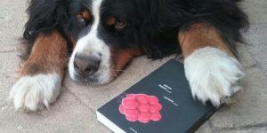 Сдвинуть сознание с орбиты или интеллектуальный роман Давида Ланди «БИОГЕН»