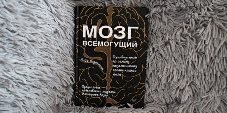 Кайя Норденген – «Мозг всемогущий. Путеводитель по самому незаменимому органу нашего тела»