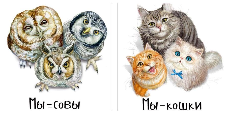 «Мы – кошки» и «Мы – совы» – Наталья Преображенская