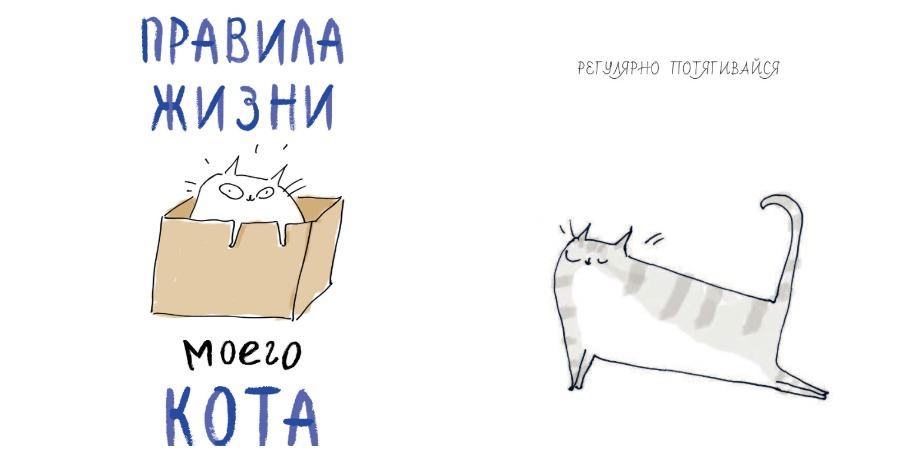 «Правила жизни моего кота» – Джейми Шелман