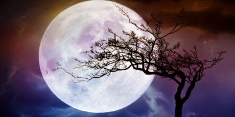 Ушедшее с Луной