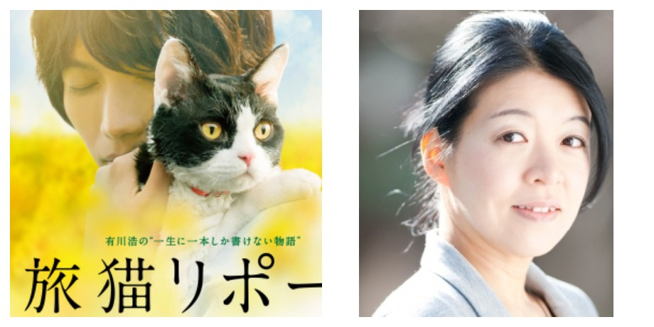 «Хроники странствующего кота» – Хиро Арикава